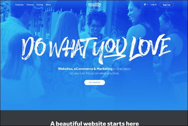 Color Options Website Builder  Weebly